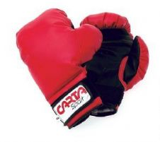 Carta Junior Boxing Gloves